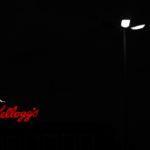 Fotospaziergang Kellogg's und Überseeinsel – Best of