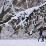 Winterwochenende(n) im Bürgerpark