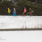 Schneetreiben – ein Spaziergang